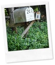 lonelyMailbox